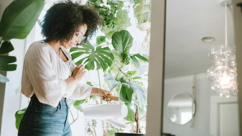 Why millennials are so obsessed with house plants