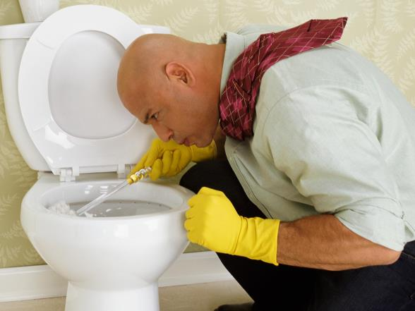 The best tips for a really clean toilet