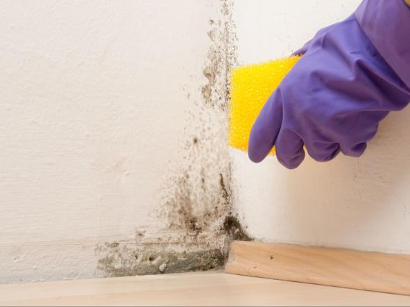 How do you prevent mold in the bathroom?