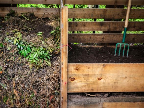 From compost heap to worm tray: that's how you compost